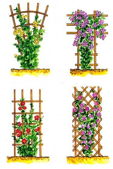 Как сделать для винограда подпорки 196