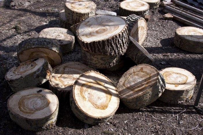 Деревянные спилы для садовой дорожки из дерева