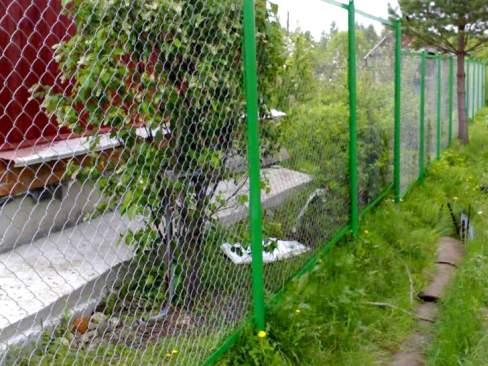 недорогой забор для дачи из сетки рабицы