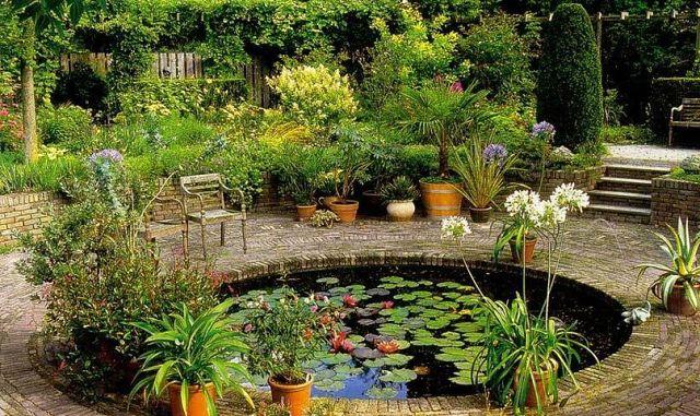 Растения для искусственного водоема