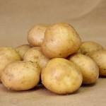 Чтобы картофель вырос крупным