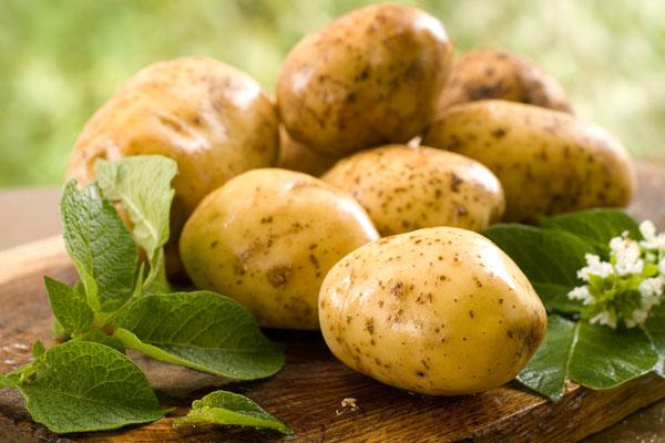 О пользе молодого картофеля