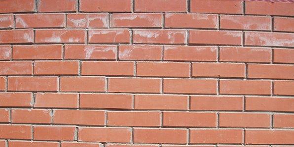 Как бороться с высолами на стене