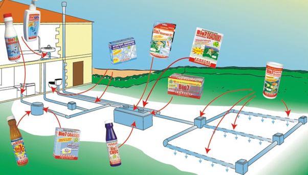 применение анаэробных бактерий для септика