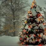 фото как украсить елку на новый год
