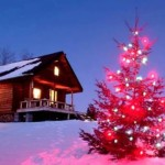 украшенные елки на новый год фото