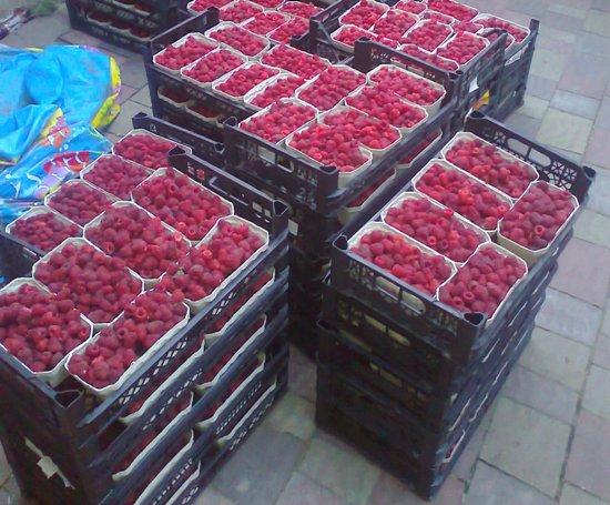 ягода в пластиковых ящиках