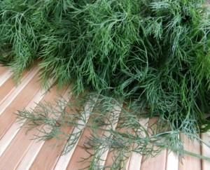 Зеленый лук круглый год. конвейер зеленого лука в теплицах 72