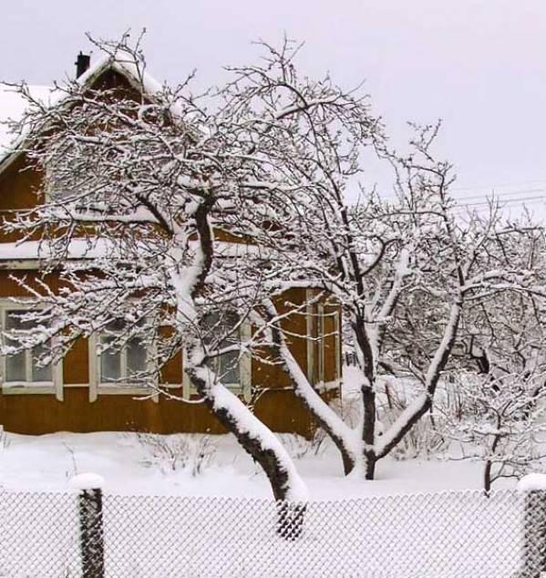 Жизнь на даче зимой - что делать, чем заняться?