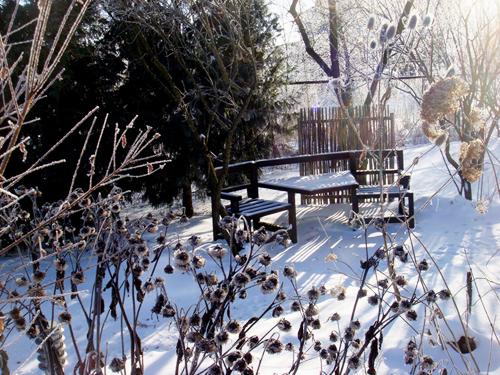 Готовимся к посадкам в огороде зимой
