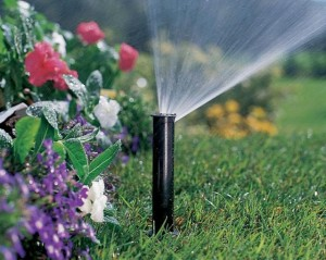 дождевальные системы автоматического полива