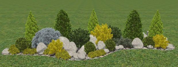 как оформить клумбу из хвойных растений