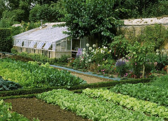 Как украсить огород