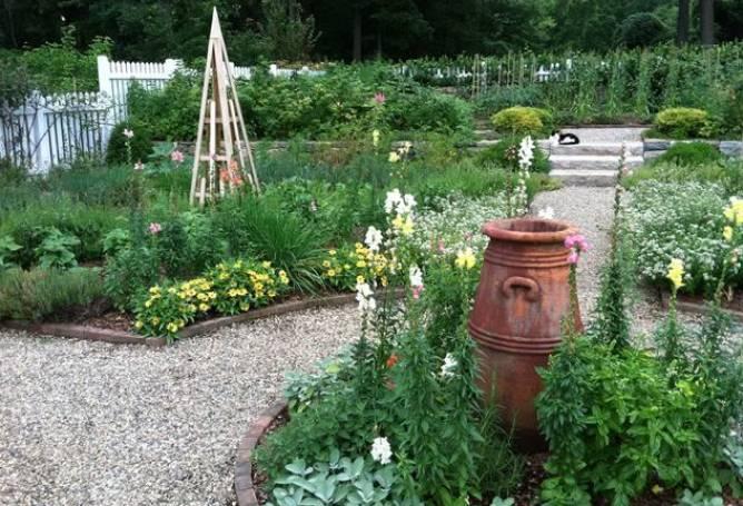 Как сделать декоративный огород