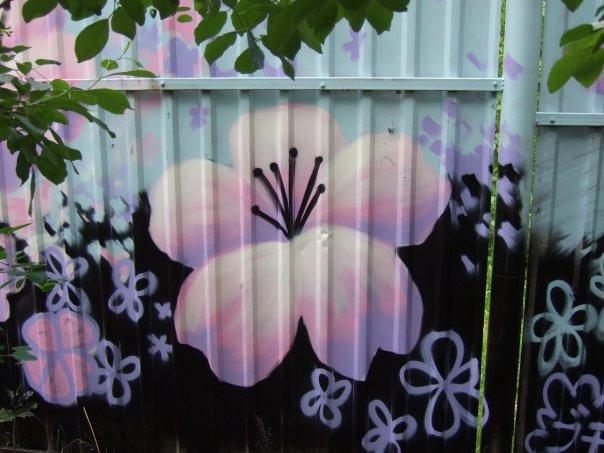Нарисовать на заборе