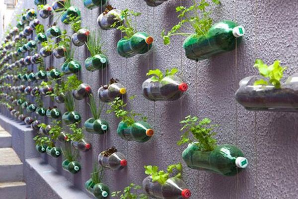 Украшаем забор на даче контейнерами с цветами