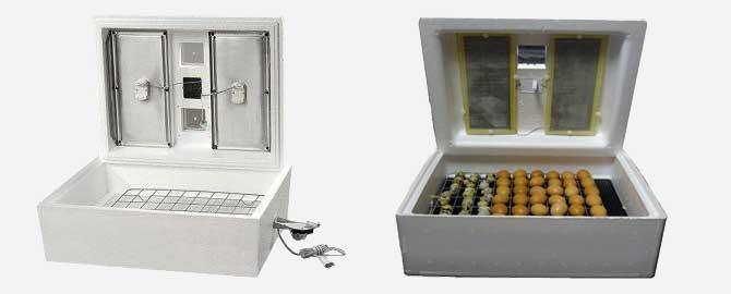 Инкубаторы для перепелов и выбор яиц