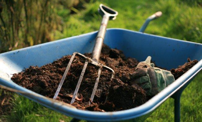 Перегной: в чем его преимущества при удобрении огорода?