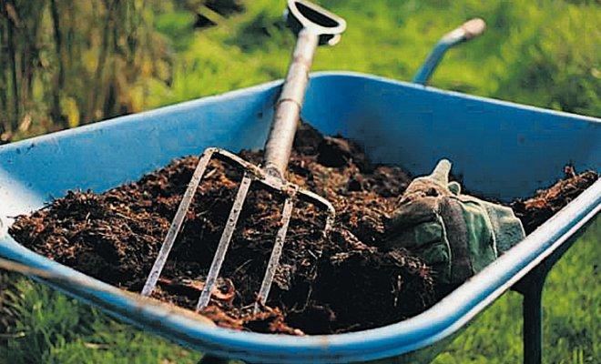 Удобрение огорода осенью