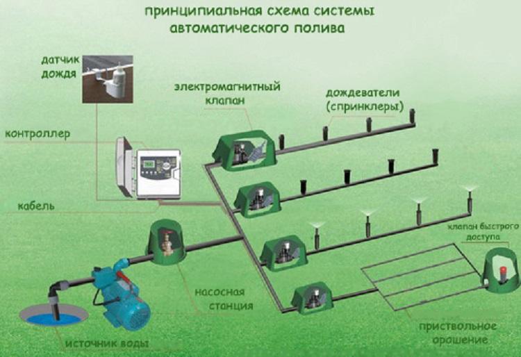 Принципиальная схема системы автоматического полива