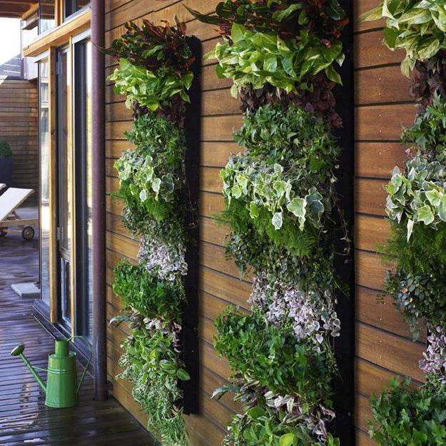 вертикальные клумбы в озеленении