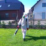 Дезинсекция - эффективная борьба с насекомыми