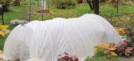 Особенности укрытия растений в зимний период