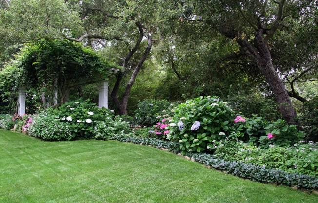 Имитация естественного или заброшенного сада