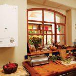 Как выбрать двухконтурный настенный газовый котел