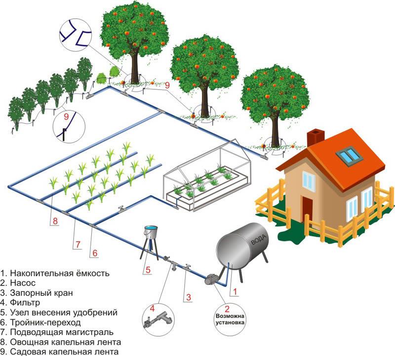 Схема устройства системы капельного полива на дачном участке