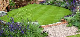 Рулонный газон — быстрый способ облагородить свой двор