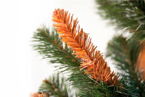 Отчего у елки посыпались иголки?