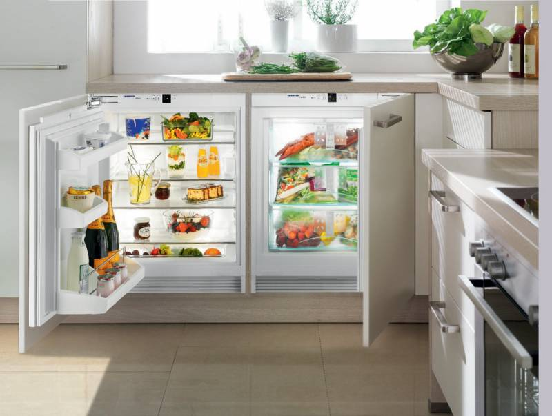 Какой холодильник нужен на даче