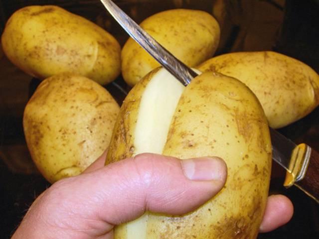 нужно ли резать клубни картофеля