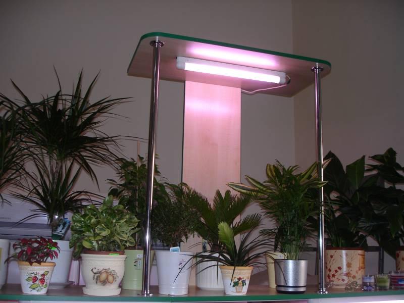 На какой высоте вешать светильник над рассадой 15