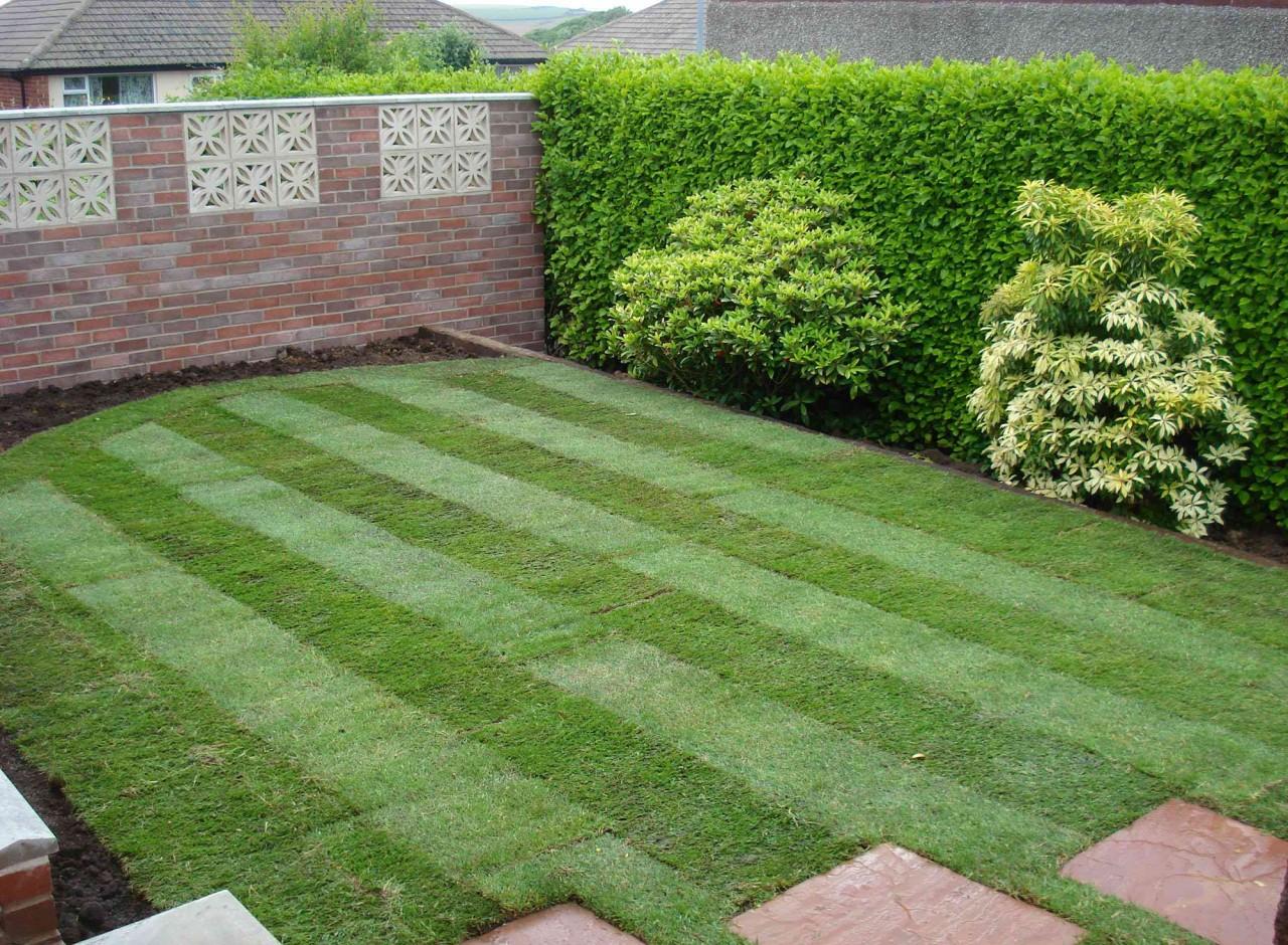 Как сделать красивые газоны