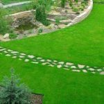 Создание газона при озеленении участка