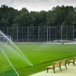 Особенности спортивного газона
