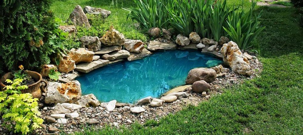 Декоративный пруд: сооружение и уход