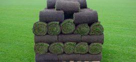 Правильная стрижка рулонного газона