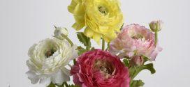 Искусственные цветы в интерьере — романтика Прованса в доме