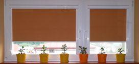 Почему люди выбирают рулонные шторы?